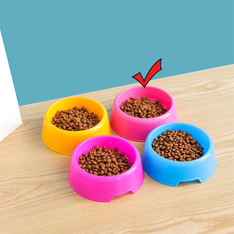 Candy Colored Pet Small Round Bowl - Pink