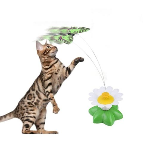 Electric Winding Butterflies Funny Cat Toy (20206)