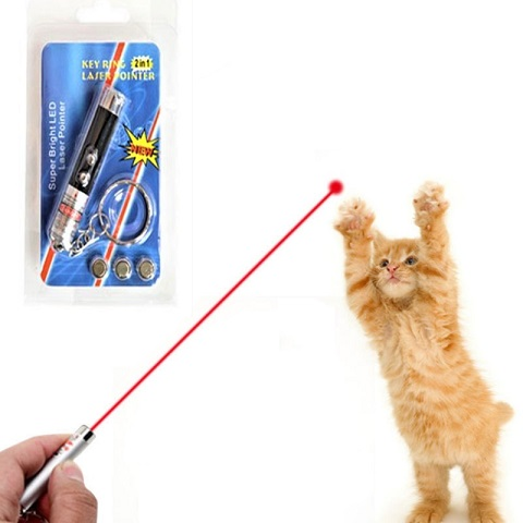 Funny 2 In 1 Super Bright LED Pet Laser Pointer With Key Ring - Black (20204)