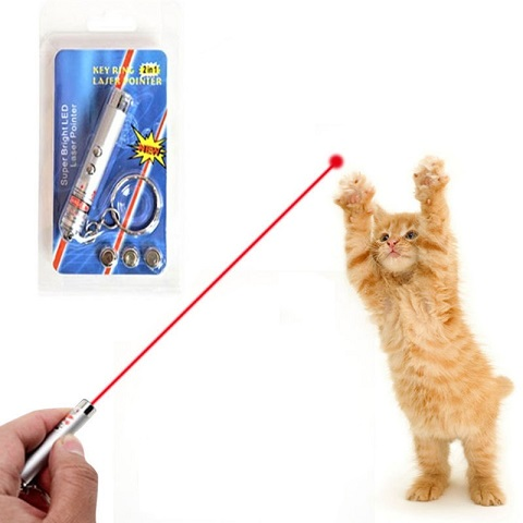 Funny 2 In 1 Super Bright LED Pet Laser Pointer With Key Ring - Silver