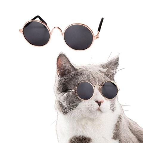 Pull Wind Sunglasses For Cat - Black (20211)
