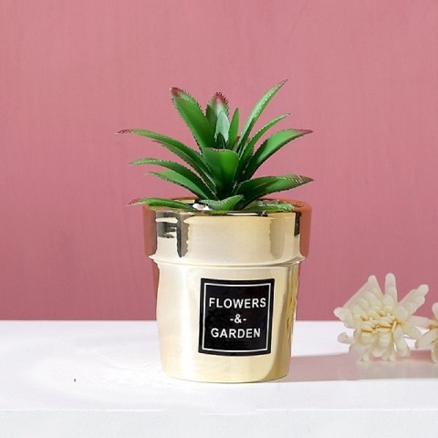 Small Nordic Gold-Plated Ceramic Home Decor Artificial Potted Cactus - Agave (20167)