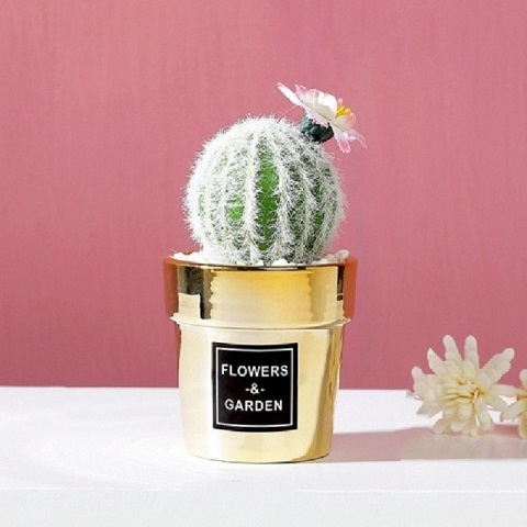 Small Nordic Gold-Plated Ceramic Home Decor Artificial Potted Cactus - Cactus (20166)